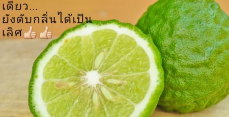 Elyrest Kaffir Lime Pure Essential Oil